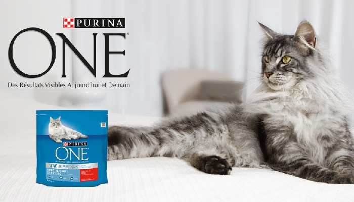 Echantillons Croquettes Purina One